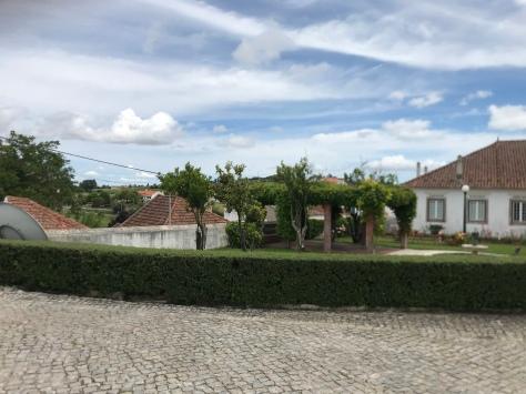vineyard tour Lisbon